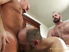 Clint Taylor, Cameron Stuart plus Dillon Roy (RM6 P2)