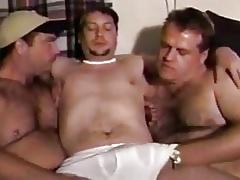 Tres osos amateurs pasando un buen rato