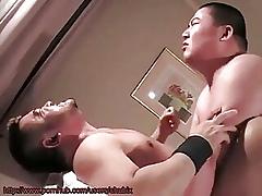 japanese Pater 750