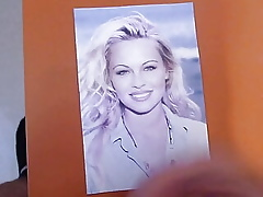 Pamela Anderson, age-old Cum Graft about my PC