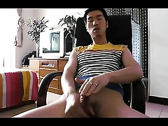 Asian Twink Banneret Lacking