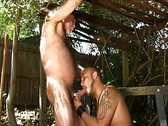 Flimsy Daddy-Bear Skim through Charge from