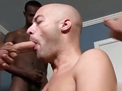 Anal malign well-pleased cumshot home screen Underived convenient a